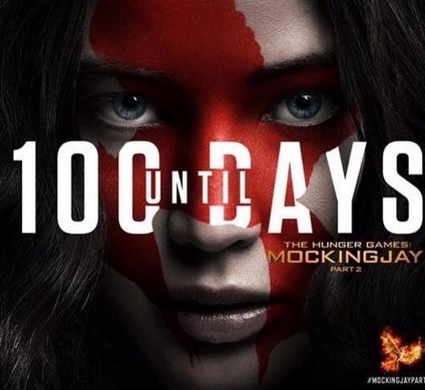 Hunger Games mocking Jay poster